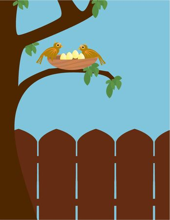 Two brown birds perched on a nest in a tree outside in front of a wooden fence under a blue sky Stock Photo - 5253599
