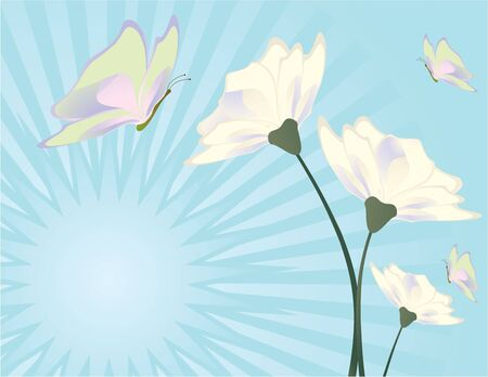 Flower and butterfly image on a blue ray burst background