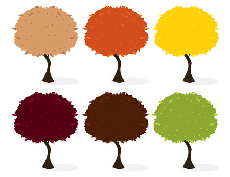 Tree in six leaf color variations with a shadow  on a white background