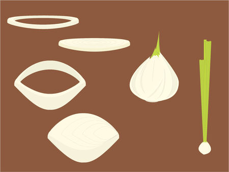 Onions and onion slices on a brown background