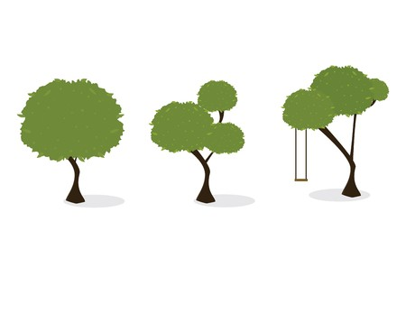 Three trees with green leaves and a slight shadow on a white background