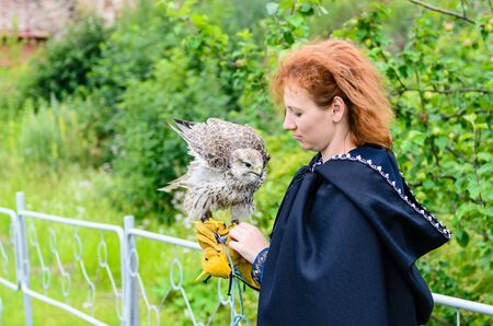 falconry: SHLISSELBURG, RUSSIA - JULY 12: falconry in JULY 12, 2015, Shlisselburg, Leningrad region, Russia.