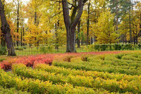 petergof: Autumn in the city Park, Park Alexandria, Petergof, Saint-Petersburg, Russia.
