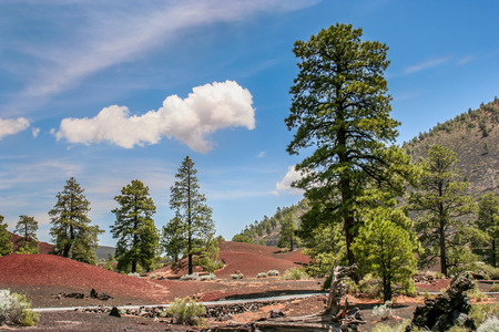 cinders: Sunset Crater Volcano National Monument is located near Flagstaff, Arizona.