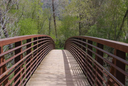 Foot Bridge into the Forest