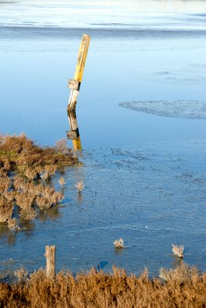 falling tide: Old sign post leaning in marsh area