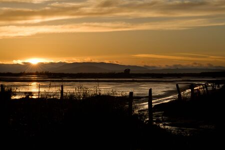 Marshland Sunset photo