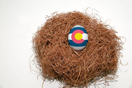 Nest egg with state of Colorado flag painted on the egg