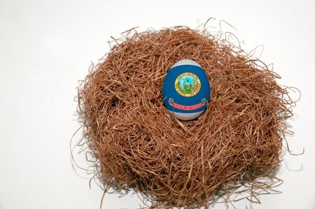 gniazdo jaj: Lokowania oszczÄ™dnoÅ›ci w stanie Idaho flagi wymalowane na jaja Zdjęcie Seryjne