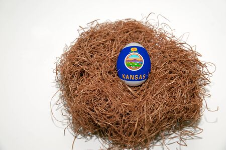 Nest egg with state of Kansas flag painted on the egg