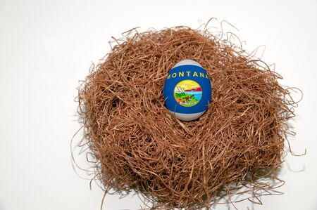 Nest egg with state of Montana flag painted on the egg photo