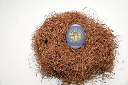 wroth: Nest egg with state of Nebraska flag painted on the egg