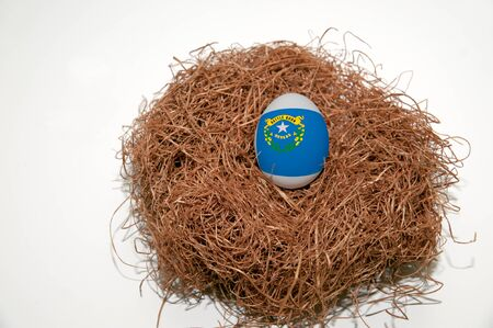 Nest egg with state of Nevada flag painted on the egg