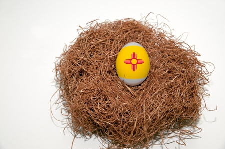 wroth: Nest egg with state of New Mexico flag painted on the egg Stock Photo