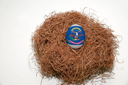 Nest egg with state of North Dakota flag painted on the egg photo