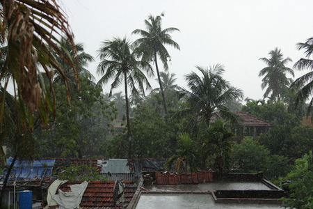 Heavy rain and storm over the village
