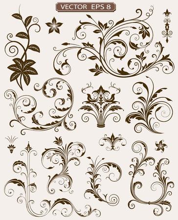 Various ornate scroll design elements vector illustration.