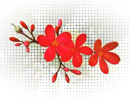 A tropical flower vector illustration. Saved in eps 10 with 2 transparent objects and 1 opacity mask, gradient mesh is used.Well constructed for easy editing.Hi-res jpeg file included 5200x4000.