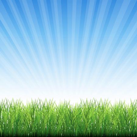 カニの草の背景。