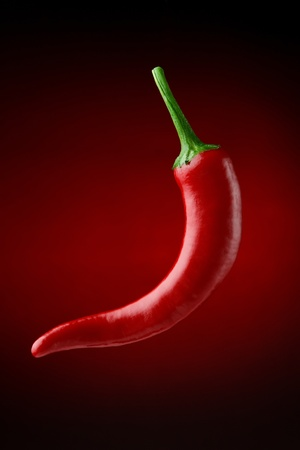 Red chilli pepper over blackred background photo