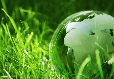 Green glass globe in the grass photo