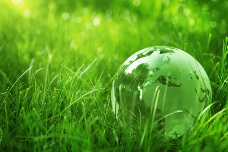 protect earth: Glass globe in the grass Stock Photo
