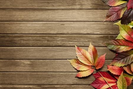 bladeren: Herfstbladeren op houten achtergrond met een kopie ruimte