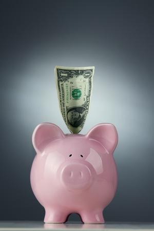 one dollar bill: Piggy bank with one dollar bill