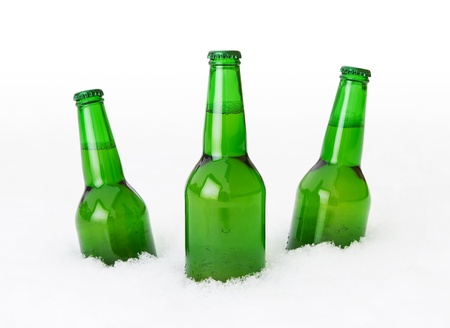 Beer bottles in the snow over white background photo
