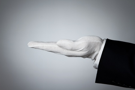 butler: Side view of elegant human hand offering some product