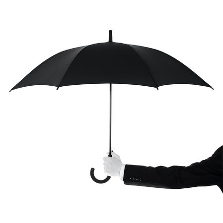 concierge: Well dressed man protecting Your text or product with an umbrella