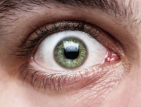 eyeball: Primer plano del ojo humano