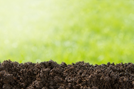 soil texture: Pile of soil against green defocused background with copy space