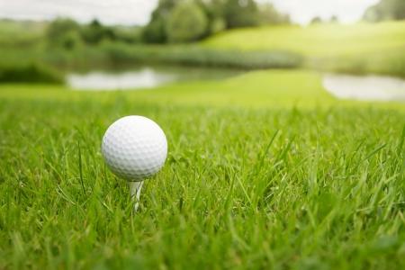 pelota de golf: Pelota de golf en una te contra el campo de golf, con copia espacio