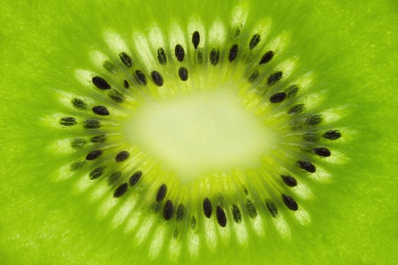 Kiwi fruit background photo