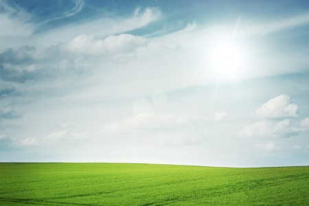 Sunny empty field with copy space Stock Photo - 19461239