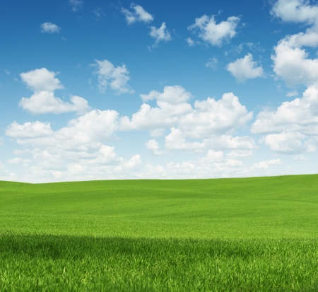 Rural landscape, empty green field with copy space Stock Photo - 20275179