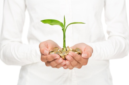 Investment concept, close up of female hands holding stack of golden coins with small plant growing out of it photo