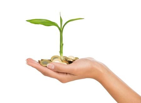 Investeringen concept, close-up van vrouwelijke hand houden van stapel gouden munten met een kleine plant groeit uit het, op een witte achtergrond Stockfoto