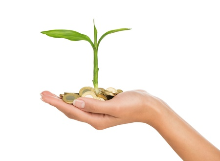 vision business: Investment concept, close up of female hand holding stack of golden coins with small plant growing out of it, isolated on white background
