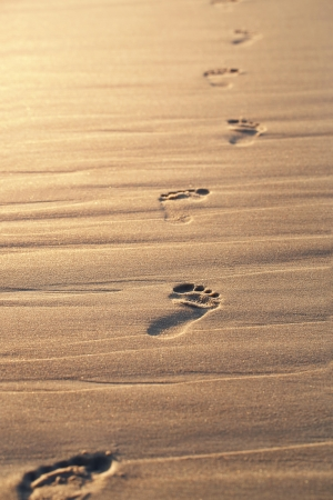 footprints in the sand: Close up of footprints on the beach sand at the sunset with copy space