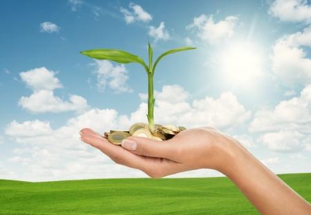 Investeringen concept, close-up van vrouwelijke hand met stapel gouden munten met kleine plant Stockfoto
