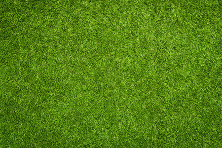 Artificial grass texture, background with copy space