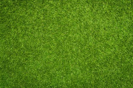 Textura de la hierba artificial, fondo con espacio de copia Foto de archivo - 30701877