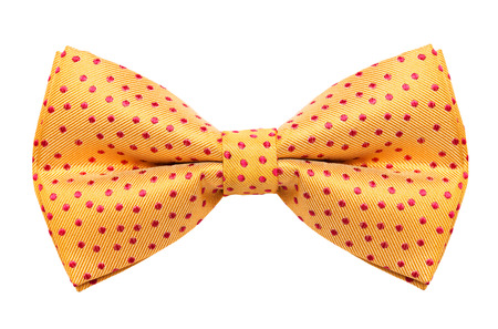 bow: Funky polka dotted bow tie isolated on white background