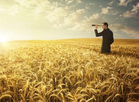 Junger Geschäftsmann im Weizenfeld auf der Suche nach neuen Gelegenheiten