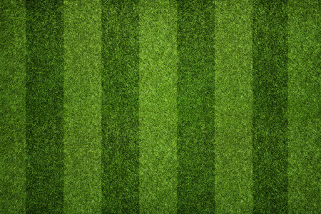 Striped soccer field texture, background with copy space