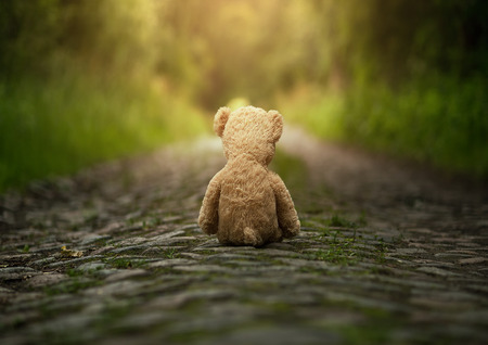 upset: Lonely teddy bear on the road
