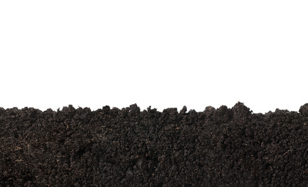 토양 표면의 사이드 뷰, 질감 흰색 배경에 고립 스톡 콘텐츠