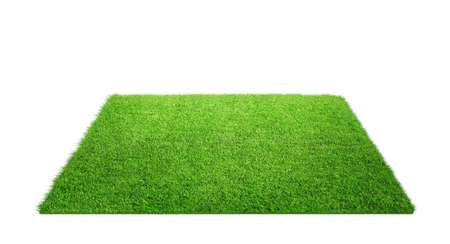 Close up of grass carpet isolated on white background with copy space